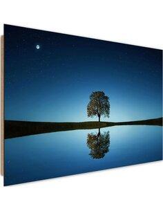 Tableau bois Lonely tree 4