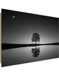 Tableau bois Lonely tree 2