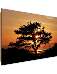 Tableau bois tree by the sea at sunset