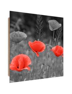 Tableau bois Poppies in the meadow