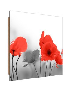 Tableau bois Red poppies in gray