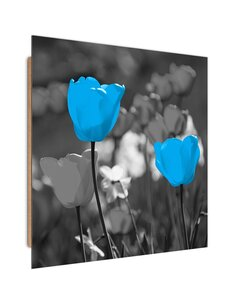 Tableau bois blue tulips on the meadow