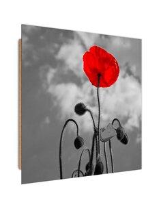 Tableau bois Red Poppy