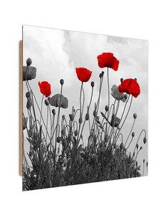Tableau bois Red poppy flowers