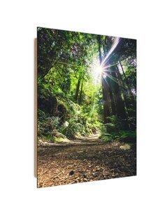 Tableau bois Path in jungle