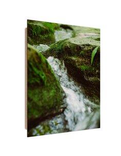 Tableau bois wild river