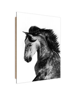 Tableau bois Wild horse