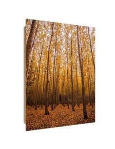 Tableau bois autumn forest