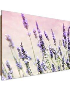 Tableau bois lavender flowers