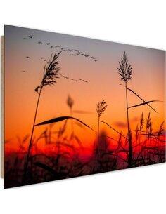 Tableau bois Grass at sunset