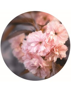 Tableau bois Powdery flowers 1