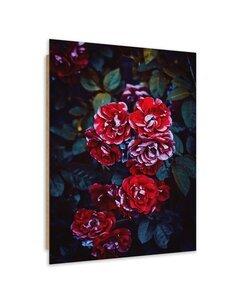 Tableau bois rose flowers on a branch