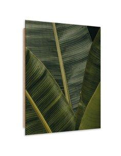 Tableau bois Banana exotic plant