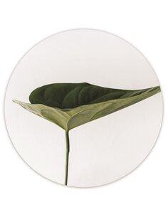 Tableau bois Plant Home
