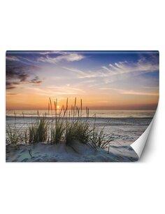 Papier peint Coucher de soleil sur la plageL   Feeby   Bleu
