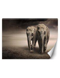 Papier peint Paire d'éléphantsL | Feeby | Gris