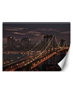 Papier peint Pont de New YorkL | Feeby | Marron