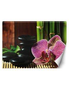 Papier peint OrchidéeL | Feeby | Rose