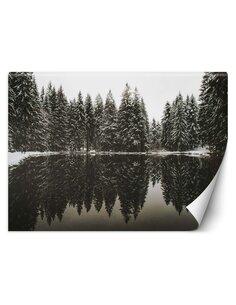 Papier peint Lac dans une forêt en hiverL | Feeby | Noir et blanc