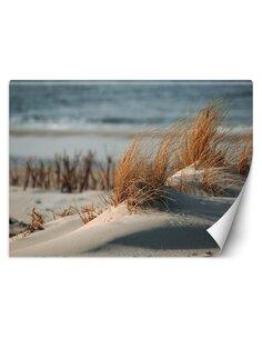 Papier peint Dunes sur la mer BaltiqueL   Feeby   Beige