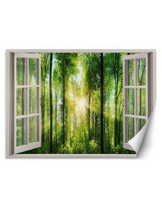 Papier peint rayons de soleil dans une forêtL | Feeby | Vert