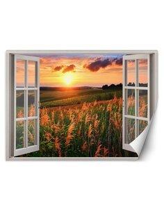 Papier peint Fenêtre avec vue sur le coucher de soleil sur un préL | Feeby | Multicolore