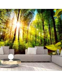 Papier peint adhésif Cachette de la forêt | Artgeist | Vert, brun, jaune