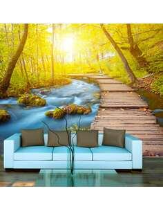 Papier peint adhésif Forêt | Artgeist | Jaune, brun, bleu