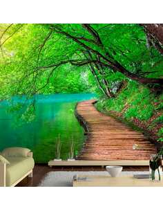 Papier peint adhésif Paix verte | Artgeist | Vert, brun