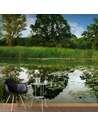 Papier peint adhésif L'étang magique | Artgeist | Vert, bleu