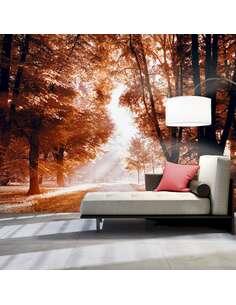Papier peint adhésif Parc d'automne   Artgeist   Brun, orange, noir