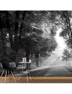 Papier peint adhésif Chemin des souvenirs | Artgeist | Noir et blanc