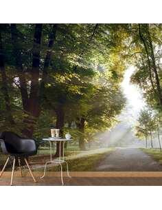 Papier peint adhésif Promenade matinale ii | Artgeist | Vert, brun