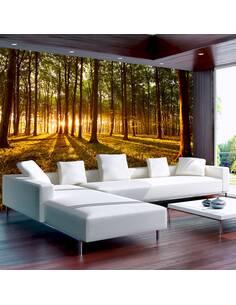 Papier peint adhésif Une matinée d'été en forêt | Artgeist | Vert, brun, jaune