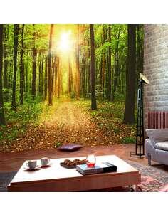 Papier peint adhésif Miroir de la nature | Artgeist | Vert, brun, jaune
