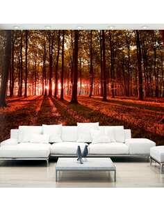Papier peint adhésif Matin d'automne | Artgeist | Orange, brun, rouge