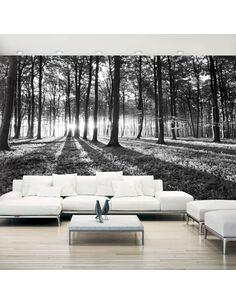 Papier peint adhésif Gris désert ii | Artgeist | Noir et blanc