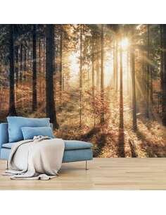 Papier peint adhésif Forêt d'automne   Artgeist   Brun, gris, jaune