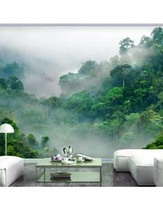 Papier peint adhésif Brouillard matinal | Artgeist | Blanc, vert