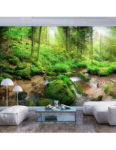 Papier peint adhésif Forêt humide   Artgeist   Vert, brun, blanc