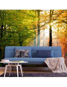 Papier peint adhésif Couleurs de la forêt   Artgeist   Orange, vert, brun