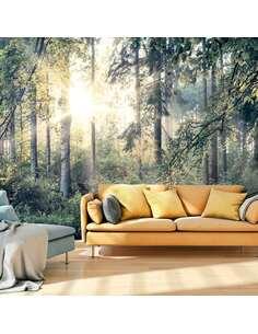 Papier peint adhésif Contes d'une forêt | Artgeist | Vert, gris, jaune