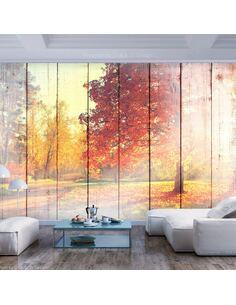 Papier peint adhésif Soleil d'automne | Artgeist | Orange, vert, blanc, bleu